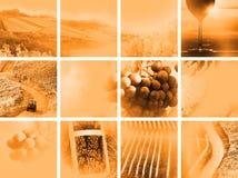 Collage del vino del paese Fotografie Stock Libere da Diritti