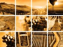 Collage del vino del paese Fotografia Stock Libera da Diritti