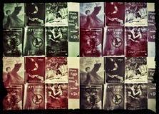 Collage dell'amante di libro Fotografia Stock