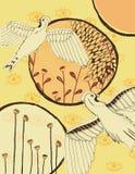 Collage dell'uccello e degli elementi Fotografie Stock