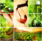 Collage dell'uva di Wine.Beautiful Fotografia Stock Libera da Diritti