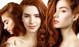 Collage della donna sensuale della testarossa con bei capelli lunghi immagine stock libera da diritti