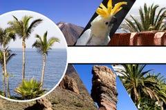 Collage della festa della spiaggia Fotografie Stock