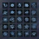Collage della foto del fiocco di neve nei colori blu scuro con 25 cristalli di neve Immagine Stock Libera da Diritti