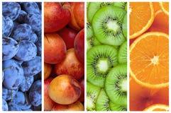 Collage della frutta fresca di estate sotto forma di bande verticali Immagine Stock