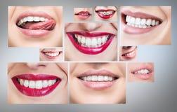Collage della gente sorridente in buona salute Fotografia Stock