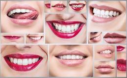 Collage della gente sorridente in buona salute Immagine Stock
