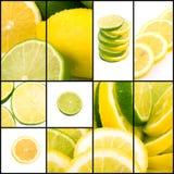 Collage della limetta e del limone Immagini Stock