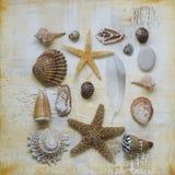 Collage della materia della spiaggia immagini stock
