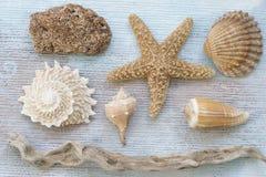 Collage della materia della spiaggia Fotografie Stock