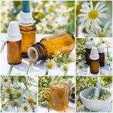 Collage della medicina alternativa Fotografie Stock