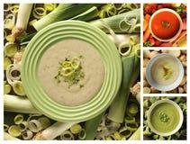 Collage della minestra del sedano con differente l'altro genere di minestra Fotografia Stock Libera da Diritti