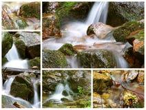 Collage della sorgente della montagna fotografia stock