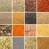 Collage delle erbe e delle spezie differenti Immagine Stock Libera da Diritti