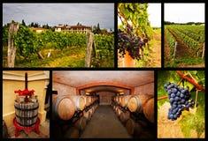 Collage delle foto circa vino Fotografie Stock Libere da Diritti
