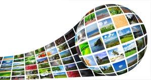 Collage delle foto della natura Immagine Stock