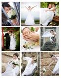 Collage delle foto di cerimonia nuziale Fotografie Stock Libere da Diritti