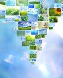 Collage delle immagini Immagine Stock