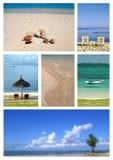Collage tropicale della spiaggia Fotografia Stock Libera da Diritti