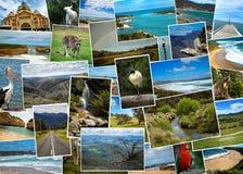 Collage delle immagini dall'Australia Immagini Stock Libere da Diritti