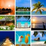 Collage delle immagini dei maldives della spiaggia di estate Immagine Stock