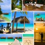 Collage delle immagini dei maldives della spiaggia di estate Fotografie Stock Libere da Diritti