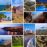 Collage delle immagini del canarino di Tenerife Immagini Stock Libere da Diritti