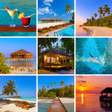 Collage delle immagini della spiaggia delle Maldive (le mie foto) Immagine Stock