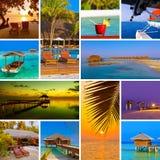Collage delle immagini della spiaggia delle Maldive (le mie foto) Immagini Stock Libere da Diritti