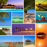 Collage delle immagini della spiaggia delle Maldive (le mie foto) Immagine Stock Libera da Diritti