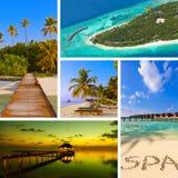 Collage delle immagini della spiaggia delle Maldive (le mie foto) Fotografia Stock