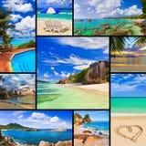 Collage delle immagini della spiaggia di estate Immagine Stock