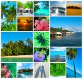 Collage delle immagini delle Maldive della spiaggia di estate - fondo di viaggio e della natura Fotografia Stock