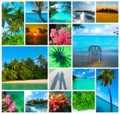 Collage delle immagini delle Maldive della spiaggia di estate - fondo di viaggio e della natura Immagini Stock Libere da Diritti