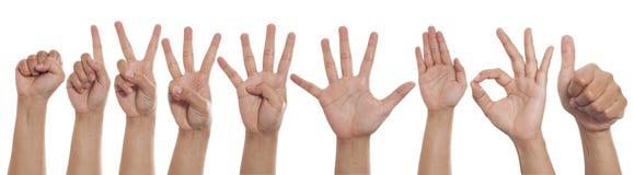 Collage delle mani che mostrano i gesti differenti, insieme dei segni del dito della mano di numero fotografia stock