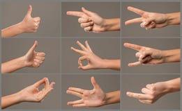 Collage delle mani della donna Immagini Stock Libere da Diritti