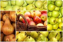 Collage delle mele e delle pere mature Fotografia Stock Libera da Diritti