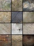 Collage delle strutture di legno dei tronchi del taglio Immagini Stock Libere da Diritti