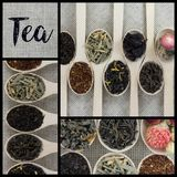 Collage delle varietà differenti e tipi di tè in cucchiai di legno Immagine Stock Libera da Diritti