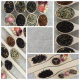 Collage delle varietà differenti e tipi di tè in cucchiai di legno Immagini Stock Libere da Diritti