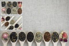 Collage delle varietà differenti e tipi di tè in cucchiai di legno Immagini Stock