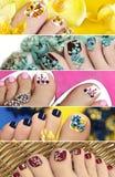 Collage der bunten Pediküre Stockfotos
