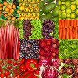 Collage der frischen Obst und Gemüse, vegetarisches Nahrungslebensmittel des gesunden strengen Vegetariers Lizenzfreies Stockfoto
