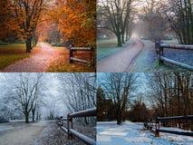 Collage der Jahreszeit lizenzfreies stockfoto