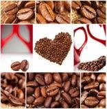 Collage der Kaffeebohnen lizenzfreies stockfoto
