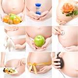 Collage der schwangeren Mädchen Stockfoto
