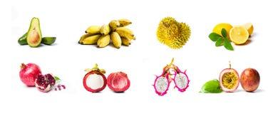 Collage der tropischen Frucht lokalisiert auf Weiß Stockbilder