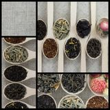 Collage der unterschiedlichen Vielzahl und Arten des Tees in den hölzernen Löffeln lizenzfreie stockfotografie