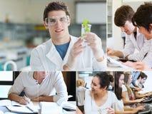 Collage des étudiants faisant la chimie Image libre de droits