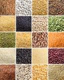Collage des légumineuses et des céréales photos libres de droits